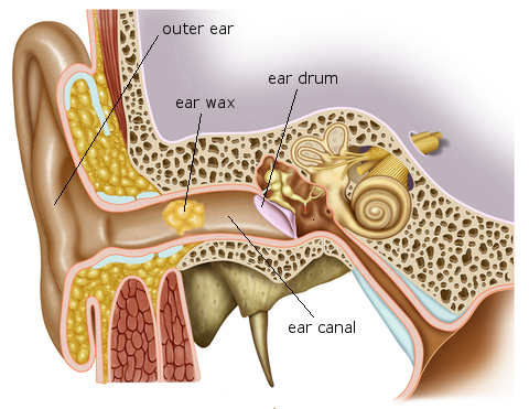 Ear wax removal - microsuction / syringing £40-60. Same day.